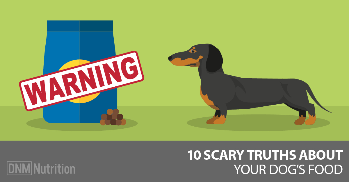 Dog Food Ten Scary Truths