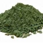 Benefits Of Spirulina For Dogs