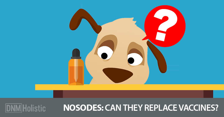 Nosodes: Can They Replace Vaccines?