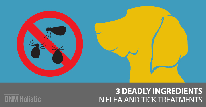 side effects of spot on flea treatments
