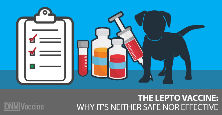 Silhouette of dog and lepto vaccines