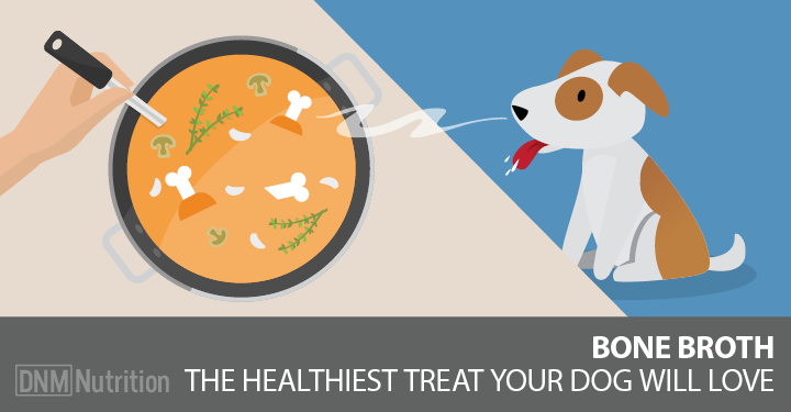 Bone Broth For Dogs? Here's Why It's A Great Idea!