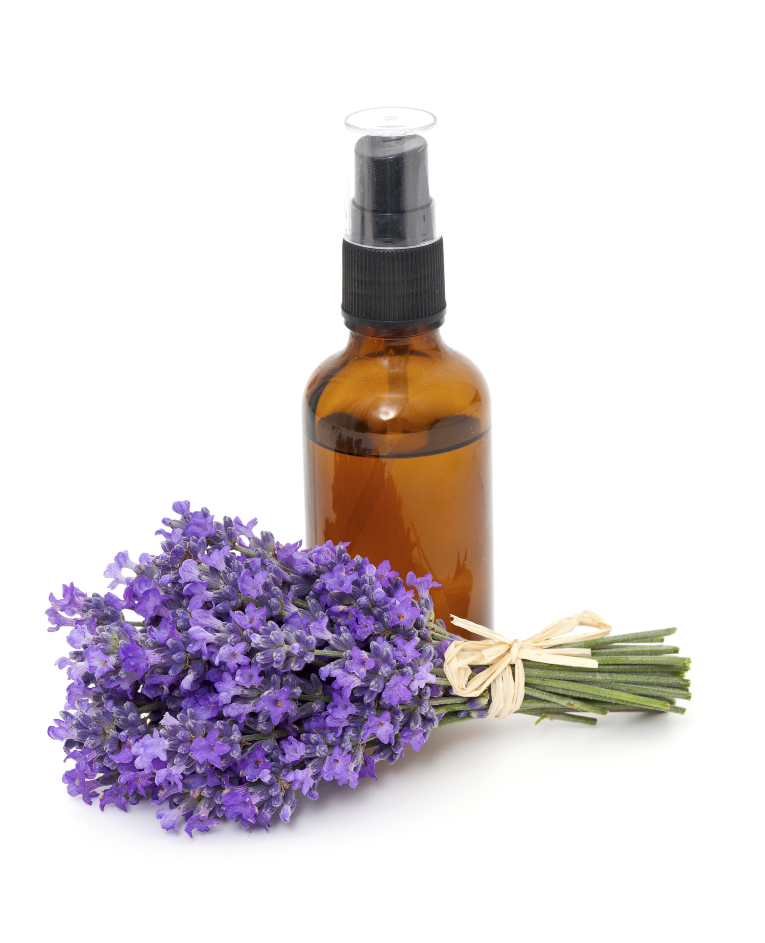 Aromatherapy For Dog Allergies Yes Please