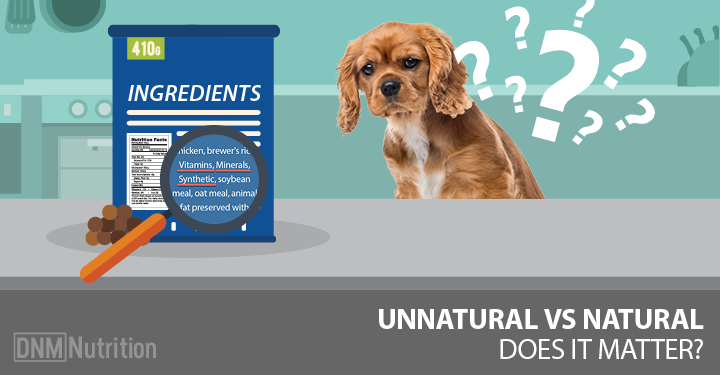 what vitamins and minerals do dogs need