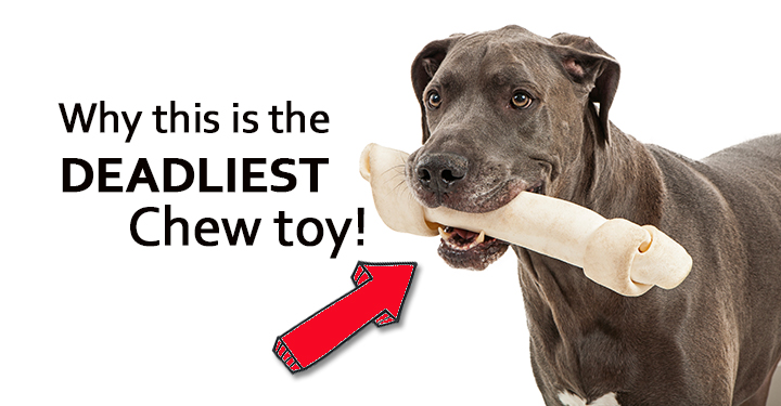 How To Make Chew Sticks For Dogs