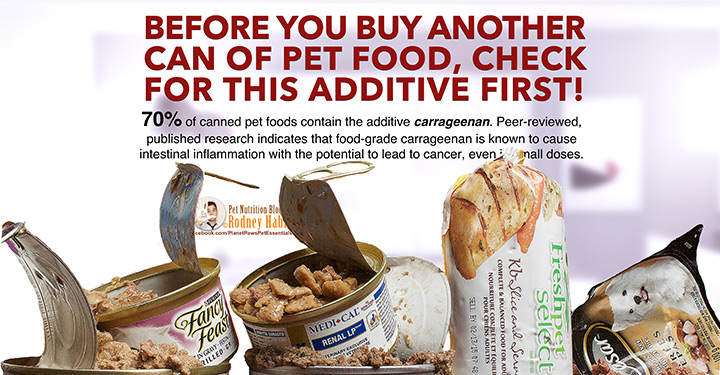 Cancer Causing Carrageenan In Pet Food