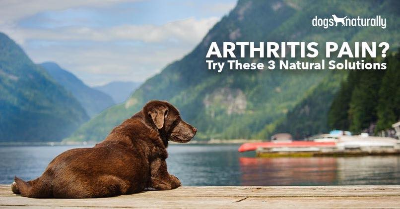 Arthritis Pain Naturally