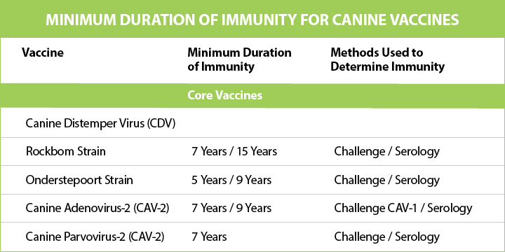 immunity time frame for dog vaccinations
