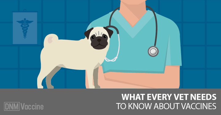 need to know about dog vaccination