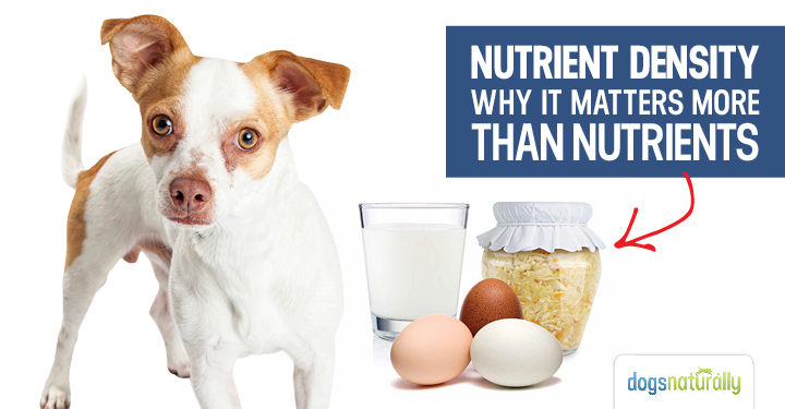 Nutrient Density: Why It Matters More Than Nutrients