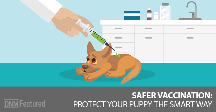 The Puppy Vaccination Dilemma