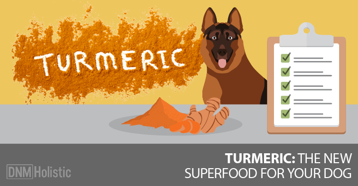 Natural Diet For Dogs With Diabetes
