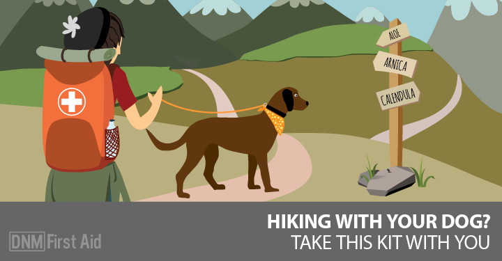 The Natural First Aid Kit For Hiking With Your Dog