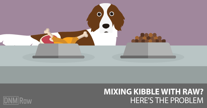 can you mix raw dog food with kibble