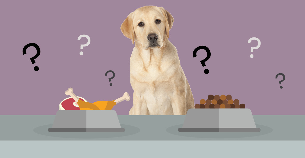 how to make dog kibble