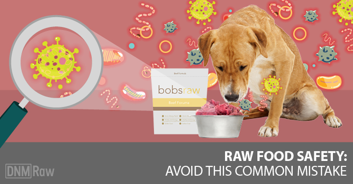 Raw Dog Food Safety: Avoid This Common Mistake