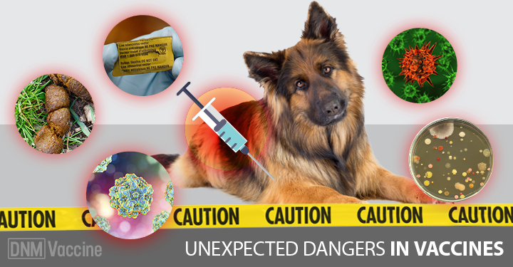 5 Unexpected Dangers In Vaccines
