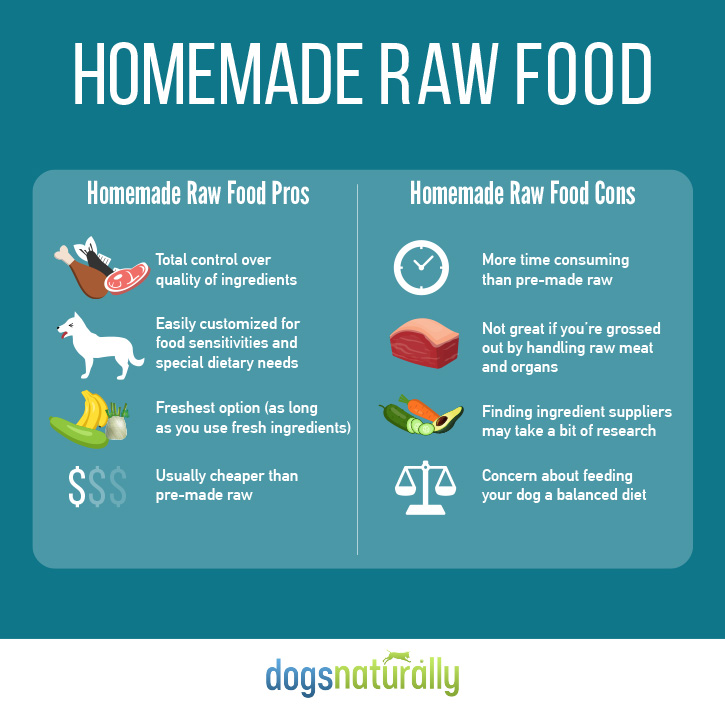 Raw dog food homemade vs store bought dogs naturally magazine raw food for dogs homemade vs premade forumfinder Gallery