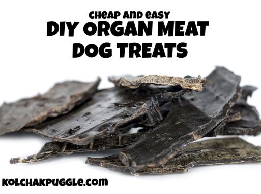 raw dog treat recipes