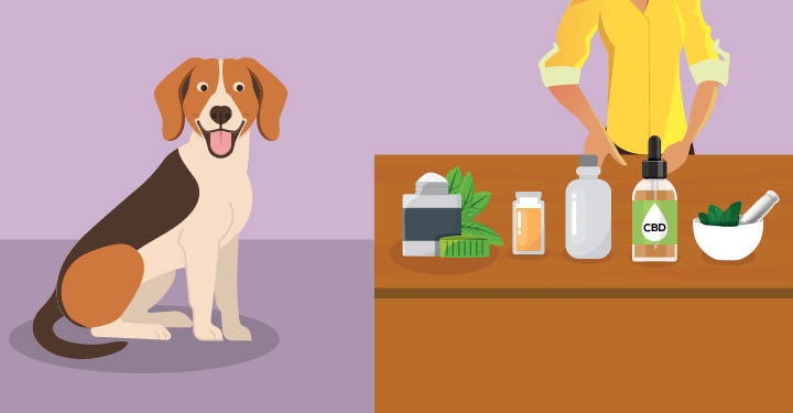Natural Pet Treatments For Cancer