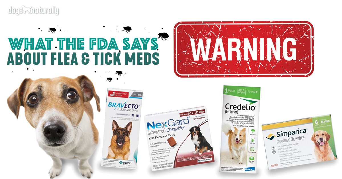 New FDA Warning About Flea And Tick Medications