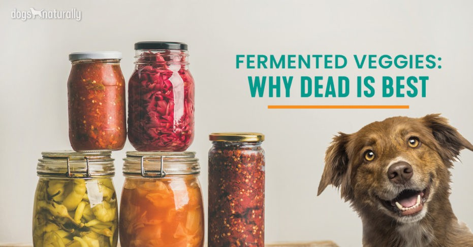 Fermented Veggies why dead is best