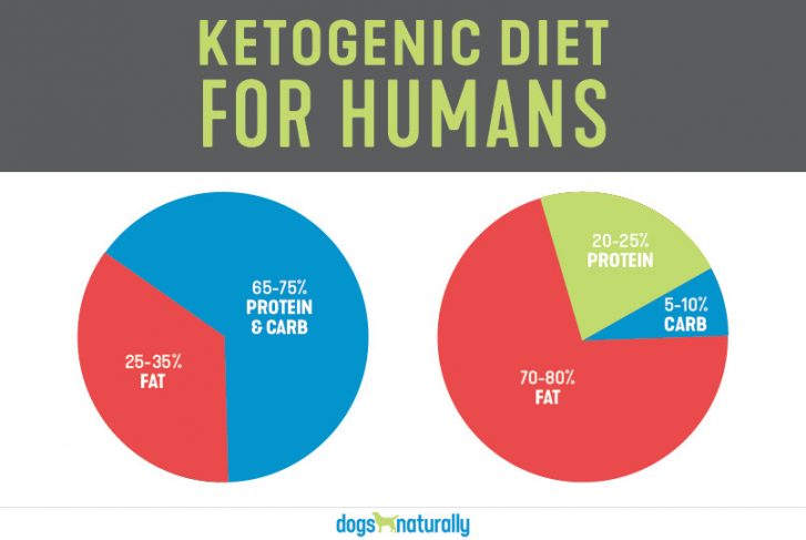 Pie graphs of the ketogenic diet for humans