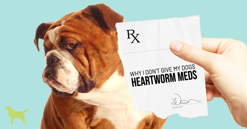 "Heartworm meds- a bulldog looking away from a script pad that says, "" why I don't give my dog heartworm meds"""